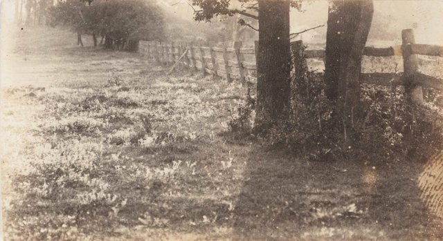 An image of Untitled (fence)