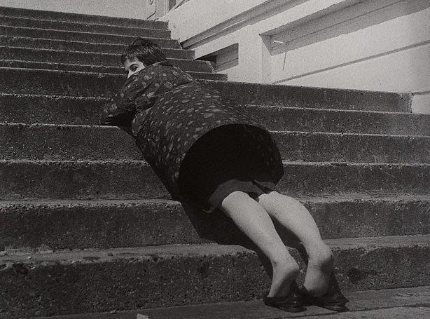 An image of Mrs Jonathan Miller, Brighton, England