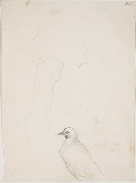 An image of (Bird study) (Sketches from Wangi and Lake Macquarie) by William Dobell