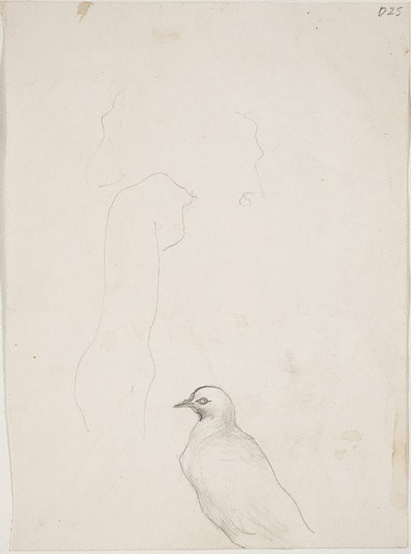 An image of (Bird study) (Sketches from Wangi and Lake Macquarie)