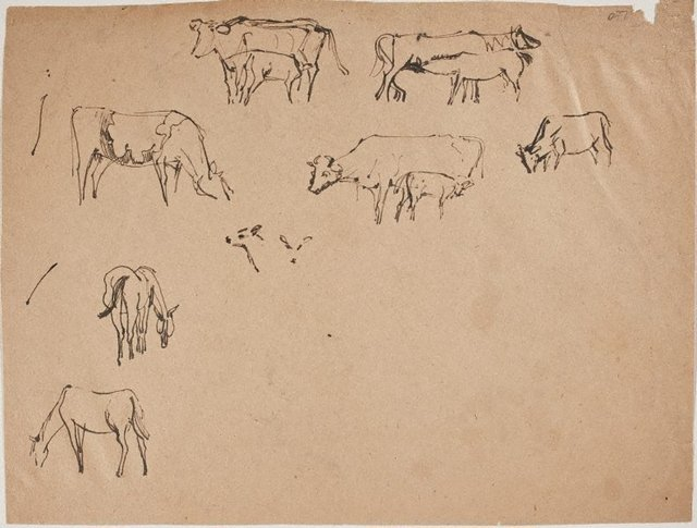 An image of (Horse and cow studies) (Sketches from Wangi and Lake Macquarie)