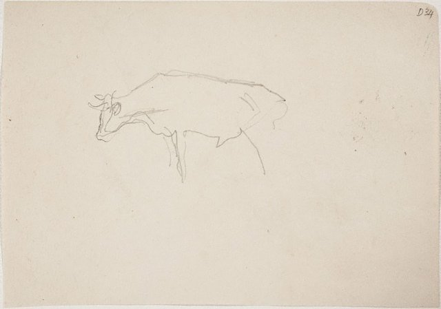An image of (Cow) (Sketches from Wangi and Lake Macquarie)
