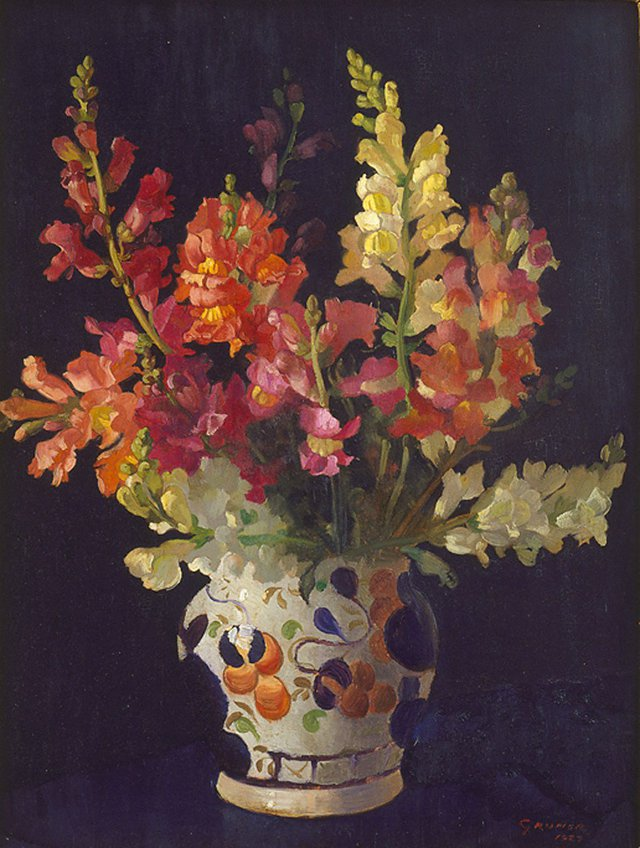 An image of Snapdragons
