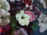 Alternate image of Petunias by Nora Heysen