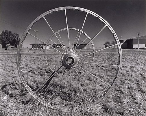 An image of Wheel, 'Dalgonally' by Max Dupain