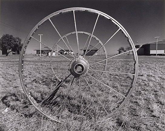 An image of Wheel, 'Dalgonally'