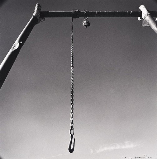 An image of Hook, 'Canobie', North Queensland by Max Dupain
