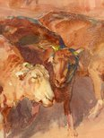 Alternate image of Drought sheep by Hans Heysen