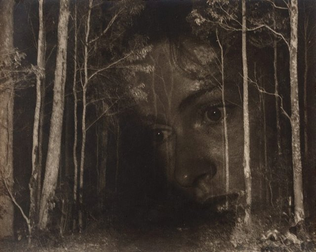 An image of Untitled (Surrealist face in woods)