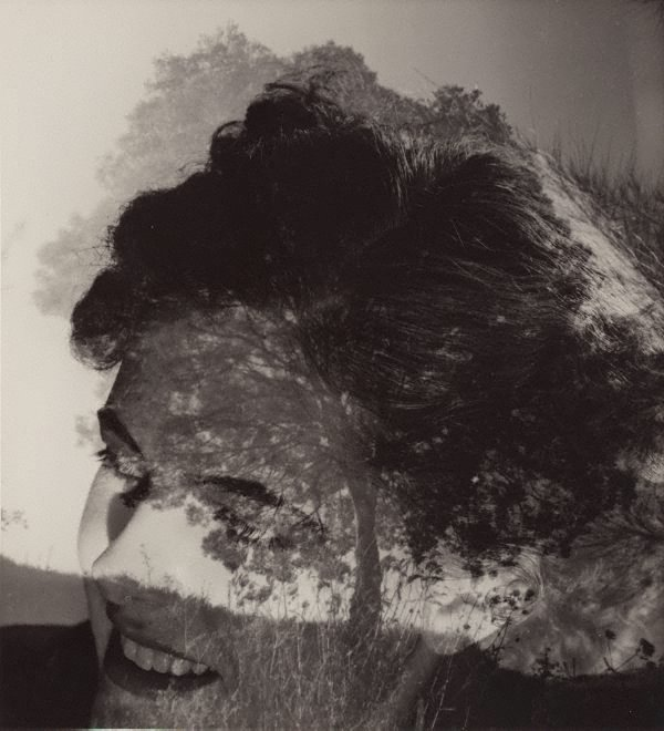 An image of Photo synthesis (woman & trees)