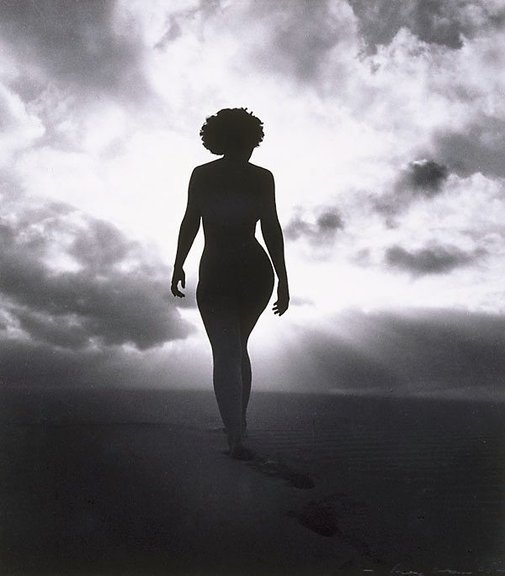 An image of Untitled (Nude torso in sunlight) by Max Dupain