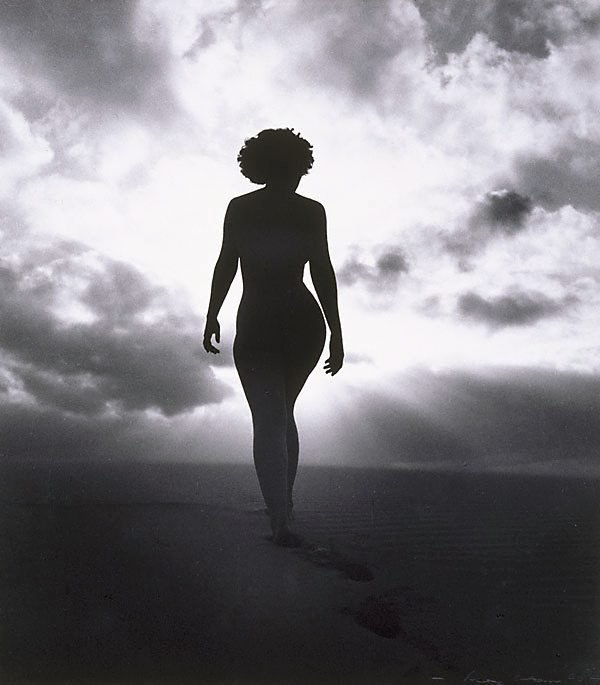 An image of Untitled (Nude torso in sunlight)