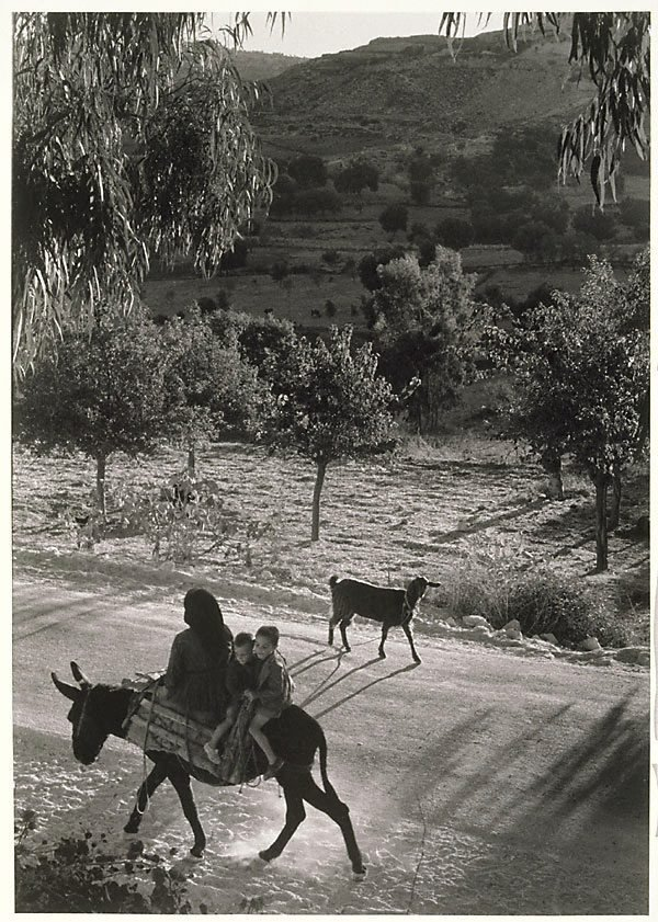 An image of Cyprus (woman and boys on donkey)