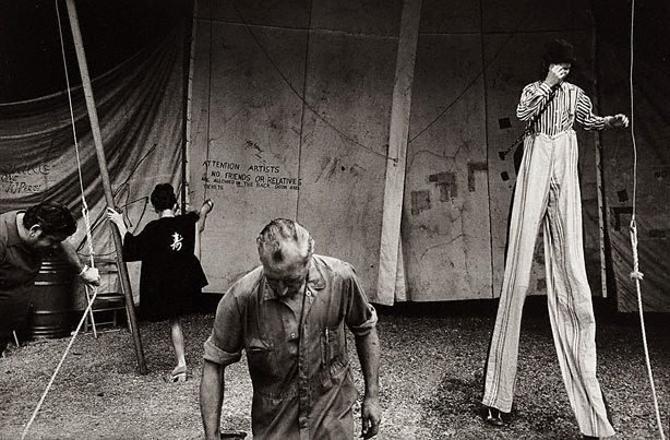 An image of Untitled (circus)