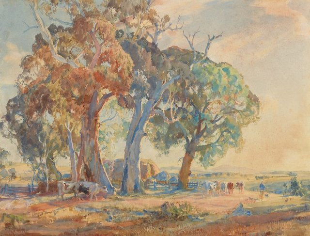 An image of Gum trees