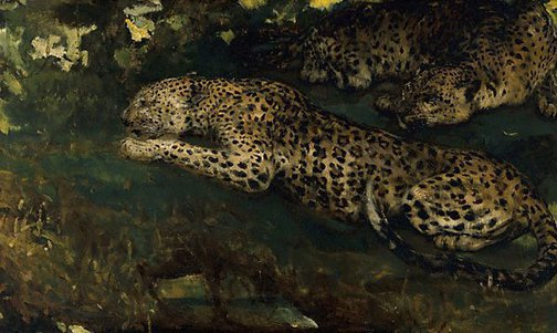 An image of Study of East African leopards by John Macallan Swan