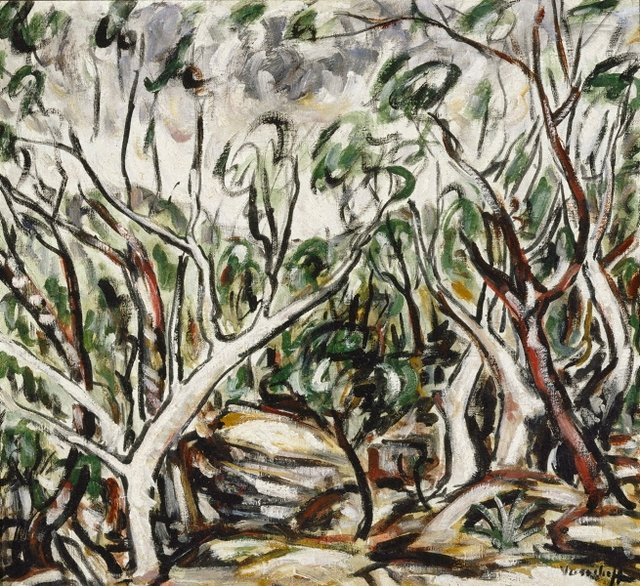 An image of Woronora landscape