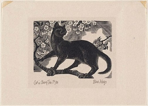 An image of Cat in cherry tree by Eileen Mayo