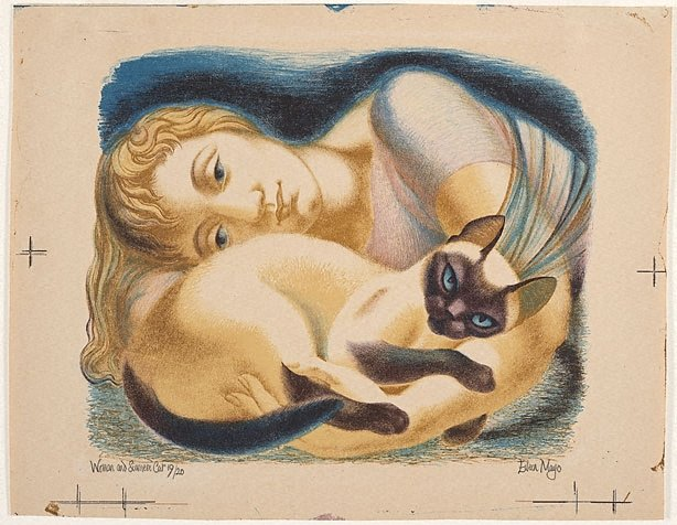 An image of Woman and siamese cat