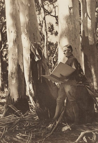 An image of Untitled (Hans Heysen sketching among gum trees) by Hans Hasenpflug