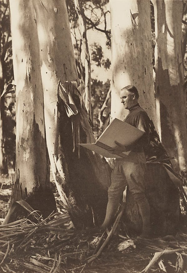 An image of Untitled (Hans Heysen sketching among gum trees)