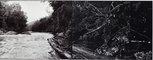 Alternate image of Murchison River and debris before flooding of Lake Murchison, Tasmania by David Stephenson