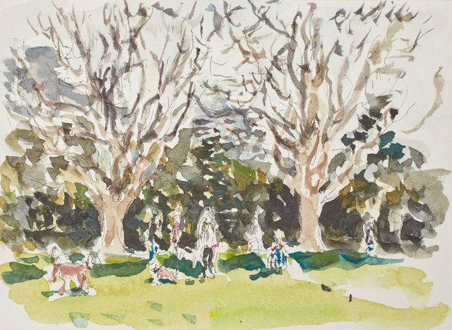 An image of Dog owners, plane trees, Rushcutters Bay