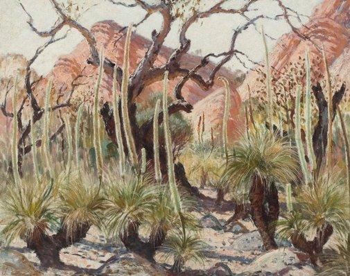 An image of Yakka trees by John Thomas Nightingale Rowell