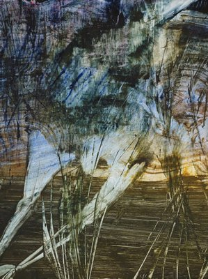 Alternate image of Animal in swamp by Sidney Nolan
