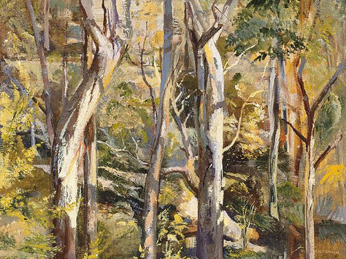 An image of Gum forest by Freda Robertshaw