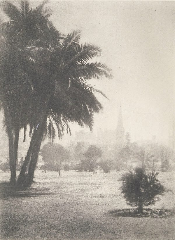 An image of Untitled (Park, Botanic Gardens, Hyde Park looking to St James?)