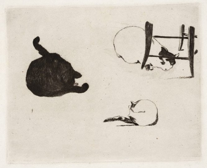 AGNSW collection Edouard Manet The cats 1868-1869