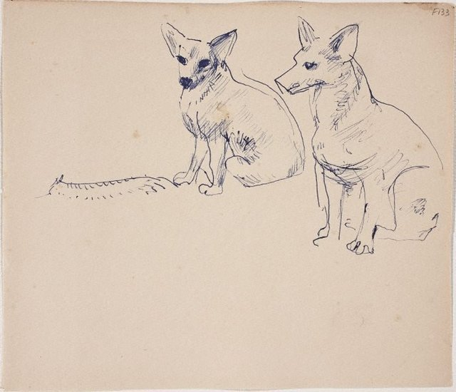 An image of (Two Dogs sitting) (Late Sydney Period)