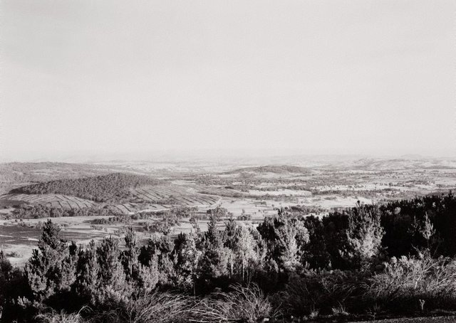 An image of View north from Tumorrama Mountain, Bondo State Forest