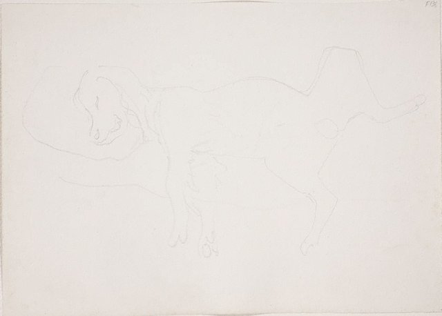 An image of (Study of sleeping dog) (Late Sydney Period)