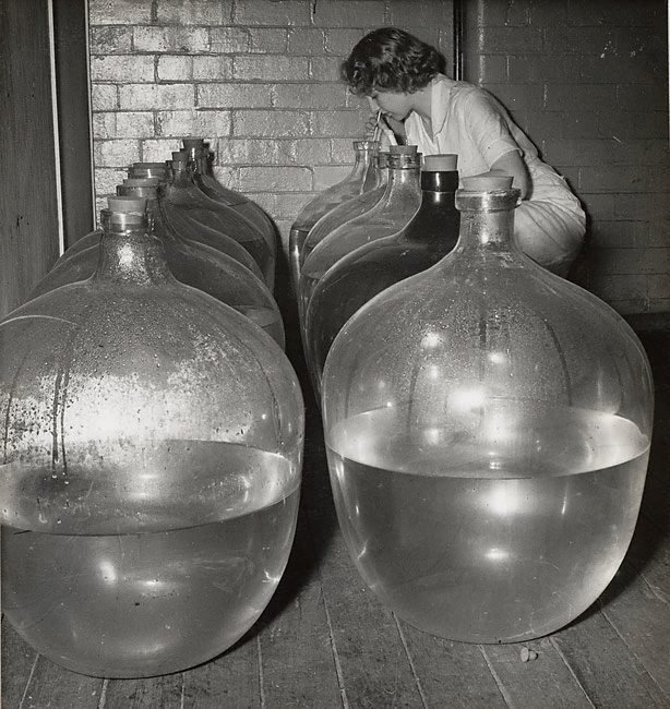 An image of Untitled (large flasks)
