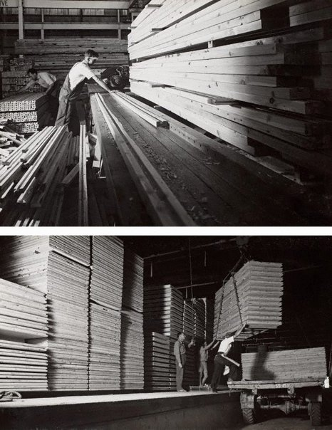 An image of recto top: Untitled (cutting milled timber) recto bottom: Untitled (loading timber) by Max Dupain