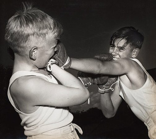 An image of Untitled (boys boxing) by Max Dupain