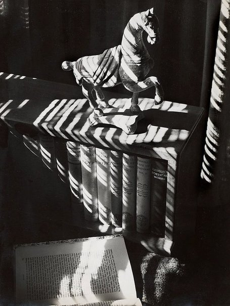 An image of Untitled (Chinese horse on bookcase) by Max Dupain