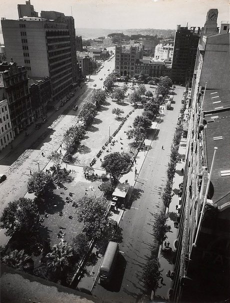 An image of Untitled (overhead view of Wynyard park) by Max Dupain