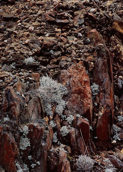 An image of Queenstown rocks No. 8 by David Moore