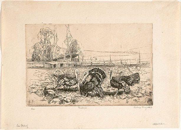 An image of Turkeys and pumpkins