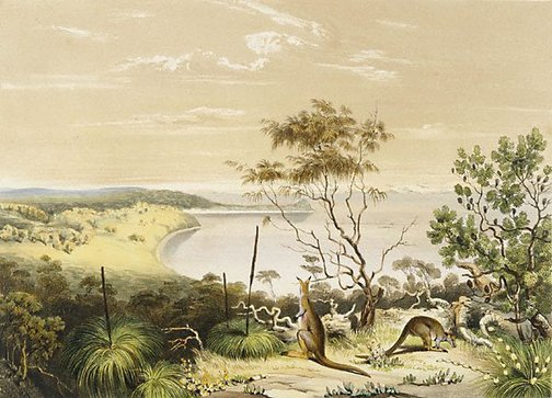 An image of Scene on the Coorung, near Lake Albert with the 'Halmaturus Greyii', a new species of kangaroo by John West Giles, after George French Angas