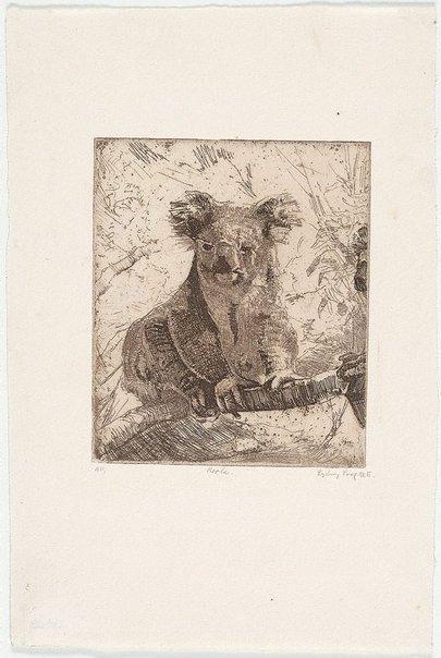 An image of Koala II by Sydney Long