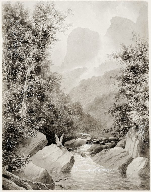 An image of In the Grose Valley, Blue Mountains