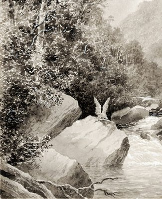 Alternate image of In the Grose Valley, Blue Mountains by WC Piguenit