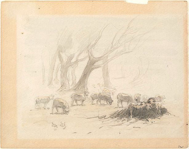 An image of Sheep grazing and trees, Heidelberg