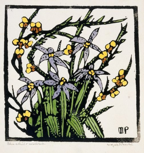 An image of N.S.W. orchid by Margaret Preston