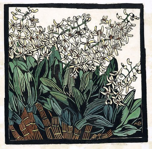 An image of Australian rock lily by Margaret Preston