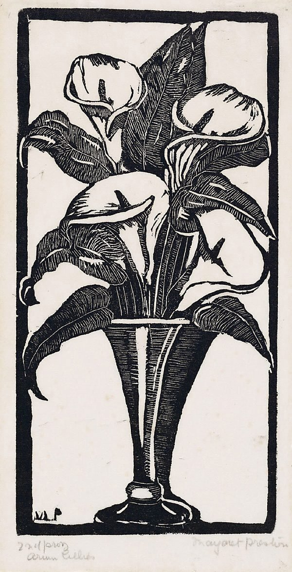 An image of Arum lilies